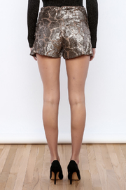 Ark & Co. Sequin Mini Shorts - Back cropped