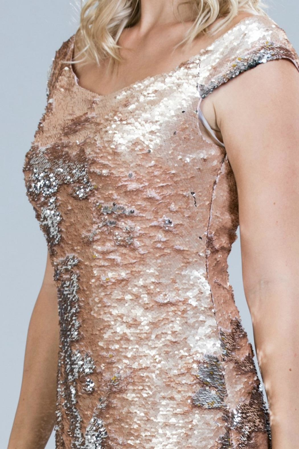 Ark & Co. Blush Sequin Dress - Back Cropped Image