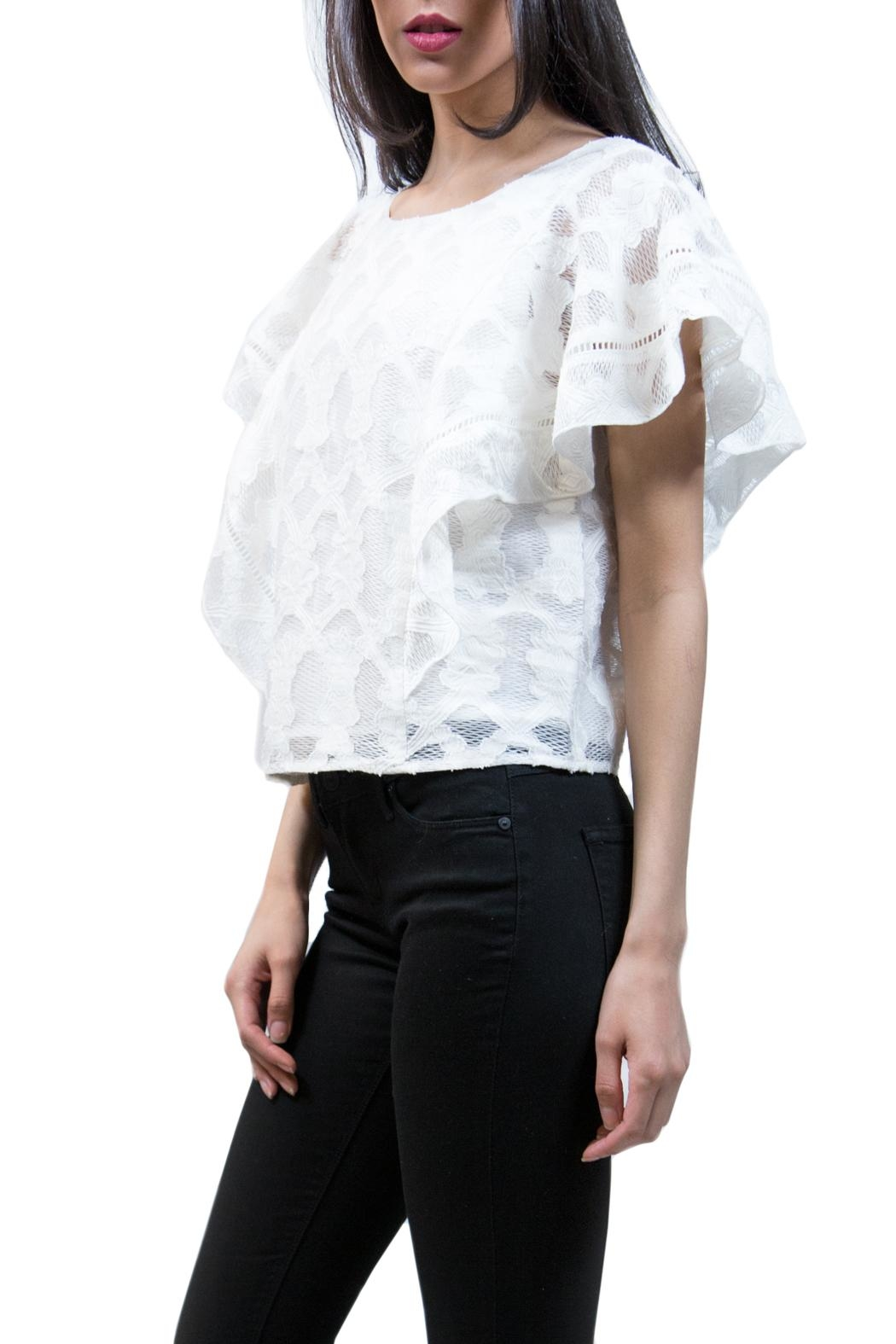 Ark & Co. Embroidered Lace Top - Front Full Image