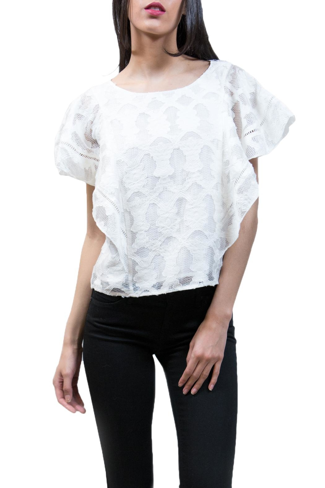 Ark & Co. Embroidered Lace Top - Main Image
