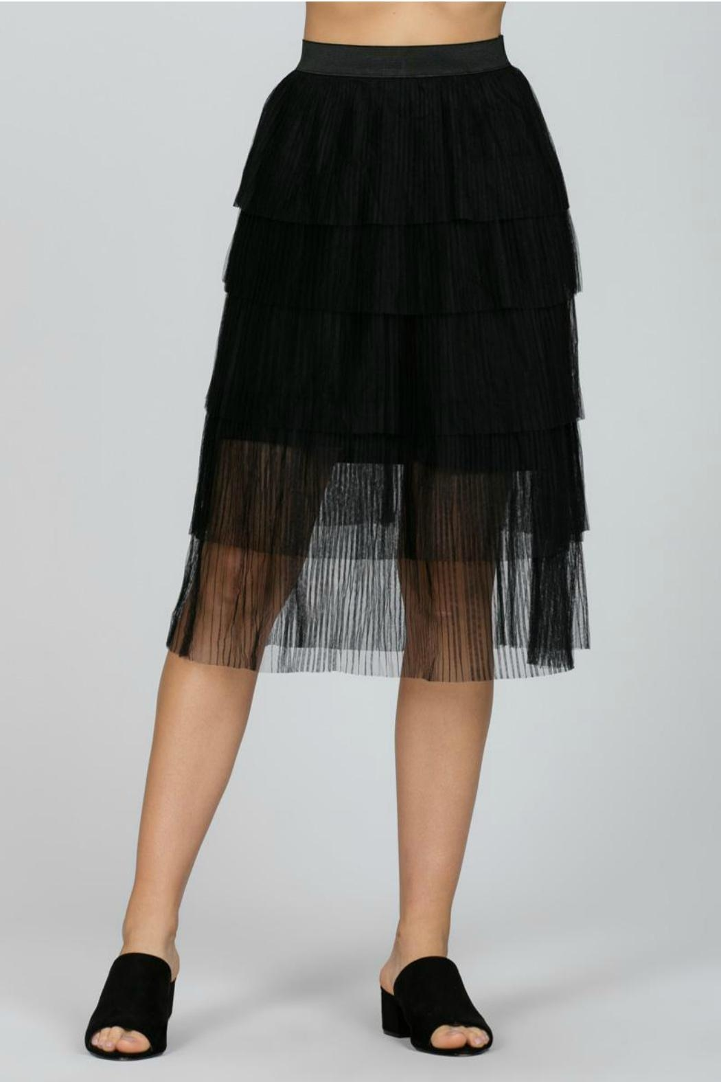 Ark & Co. Mesh Pleated Skirt - Side Cropped Image