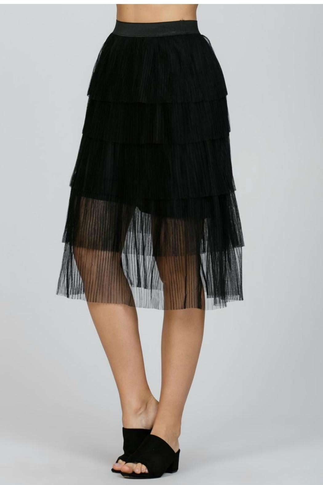 Ark & Co. Mesh Pleated Skirt - Back Cropped Image