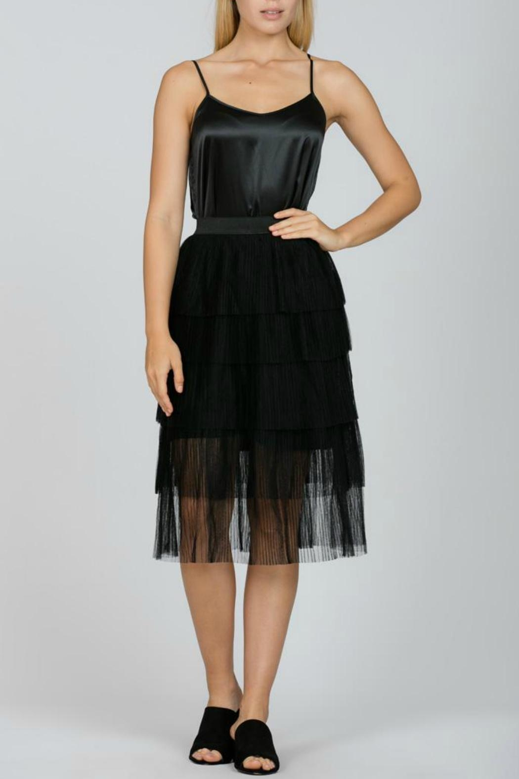 Ark & Co. Mesh Pleated Skirt - Front Cropped Image