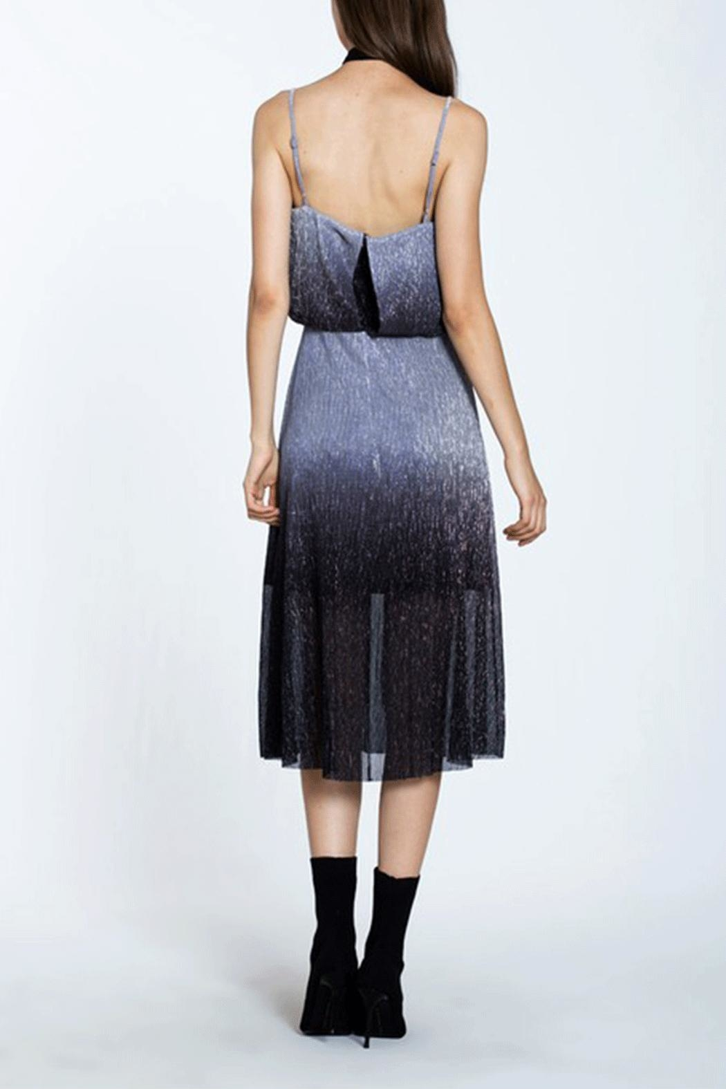 Ark & Co. Metal Pleated Dress - Side Cropped Image