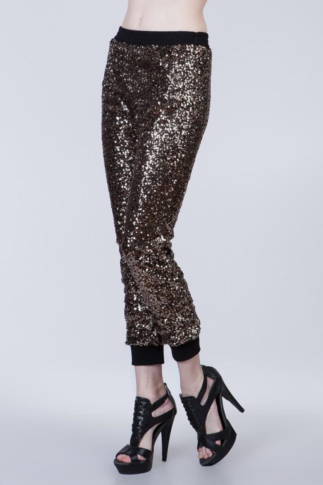 Ark & Co. Sequin Joggers - Front Full Image