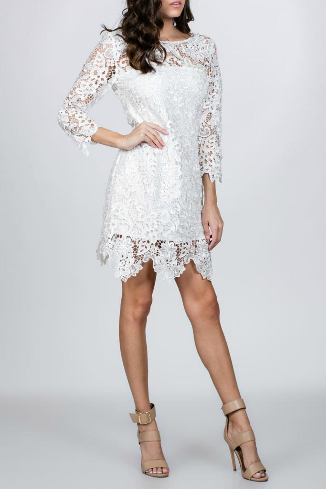 Ark & Co. White Lace Dress - Front Cropped Image