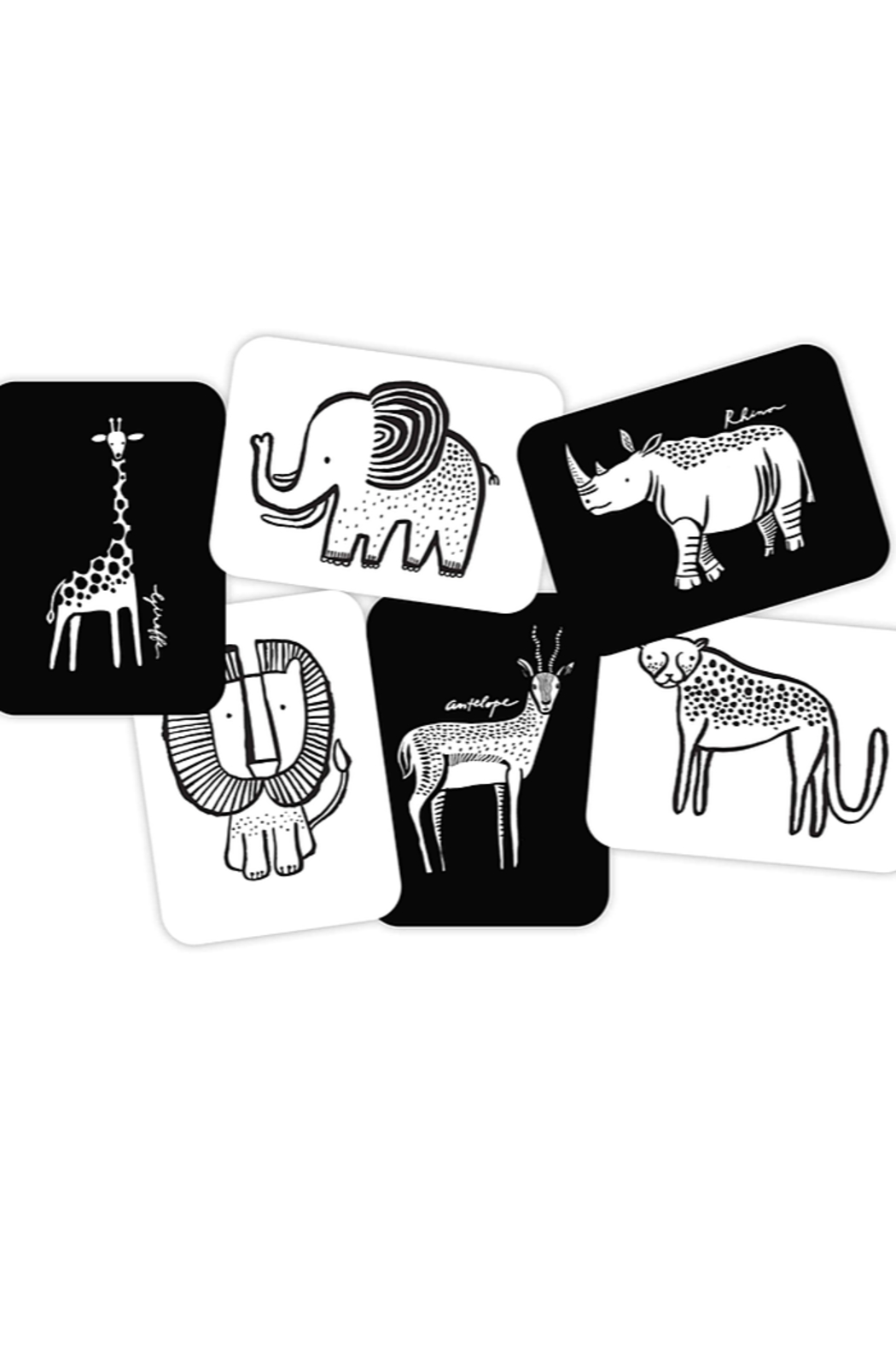 Wee Gallery Art Cards for Baby Safari - Front Full Image