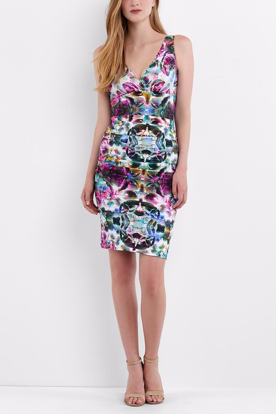 Artelier Nicole MIller Krista Fitted Dress - Main Image