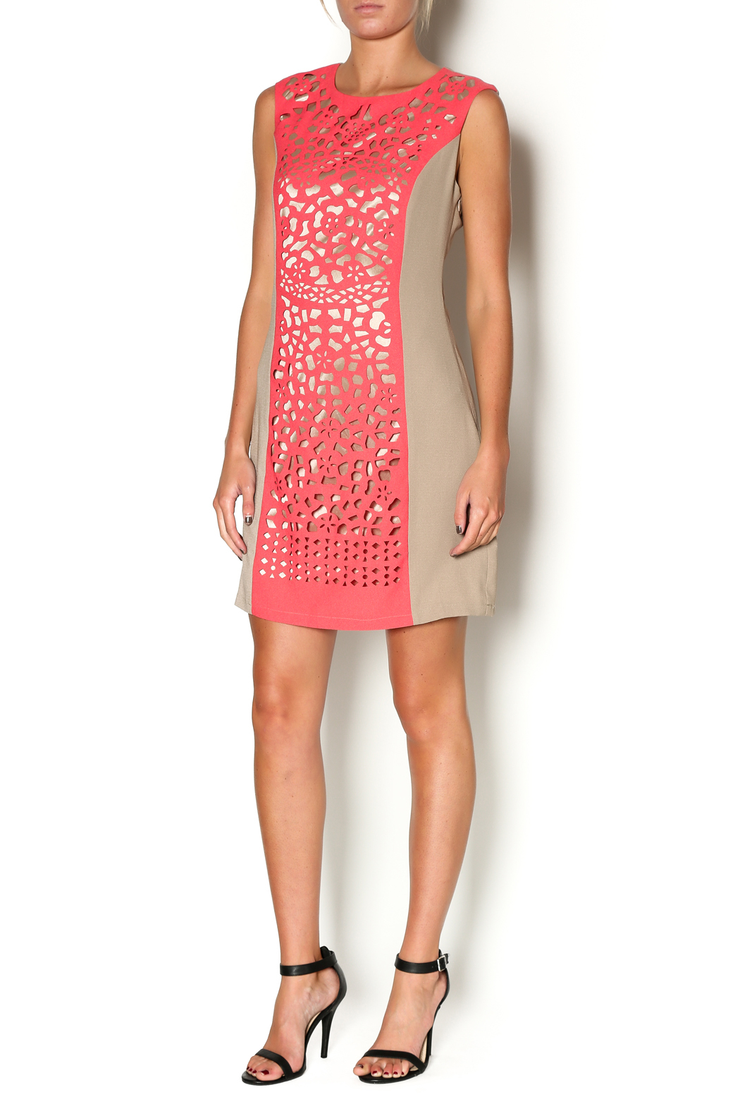 Aryeh Coral Gardens Dress - Front Full Image