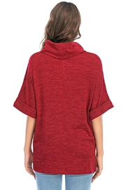Aryeh Cowl Neck Tunic In Cherry - Back cropped
