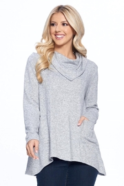 Aryeh Gray Cowl Neck Knit Top - Front cropped