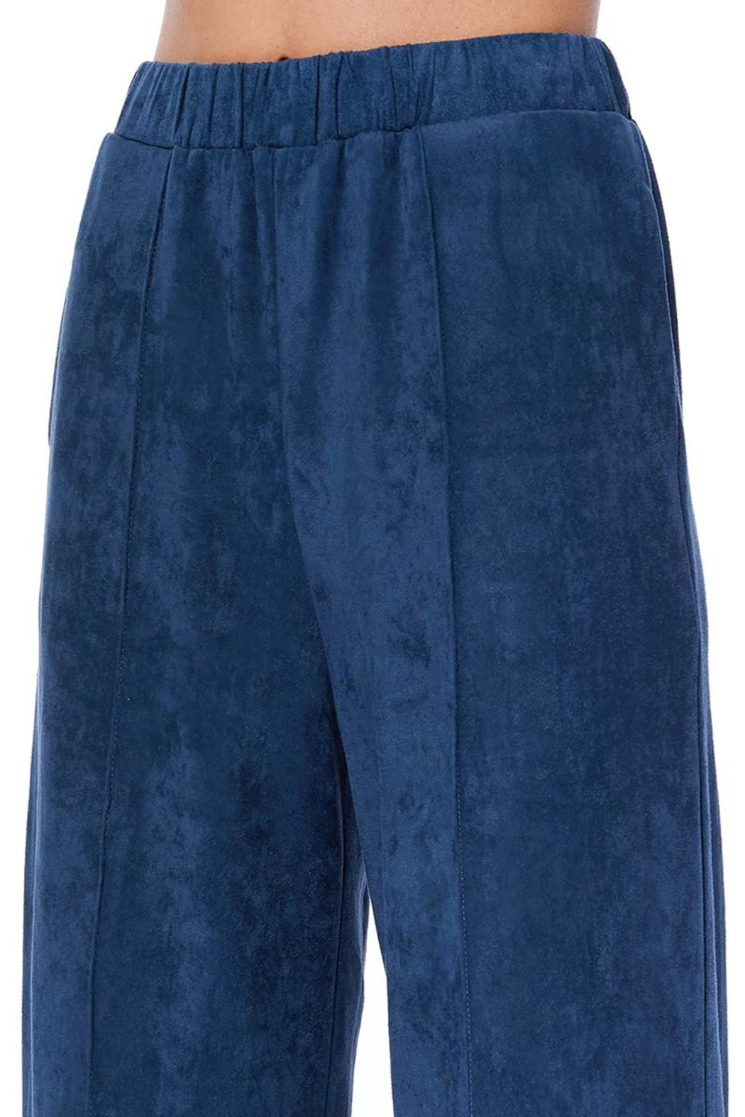 Aryeh Navy Faux Suede Pants - Front Full Image