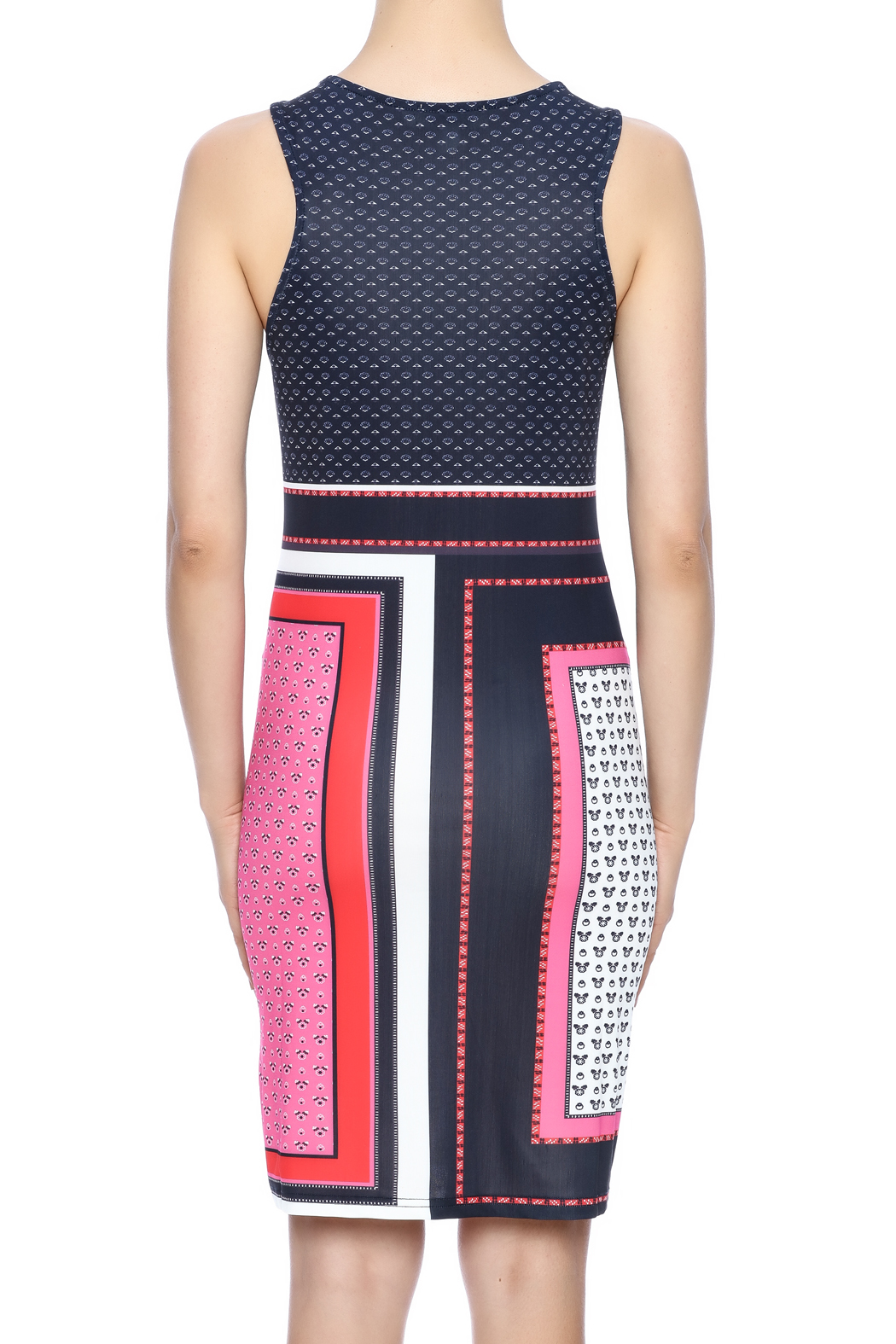 Aryeh Red Shift Dress - Back Cropped Image