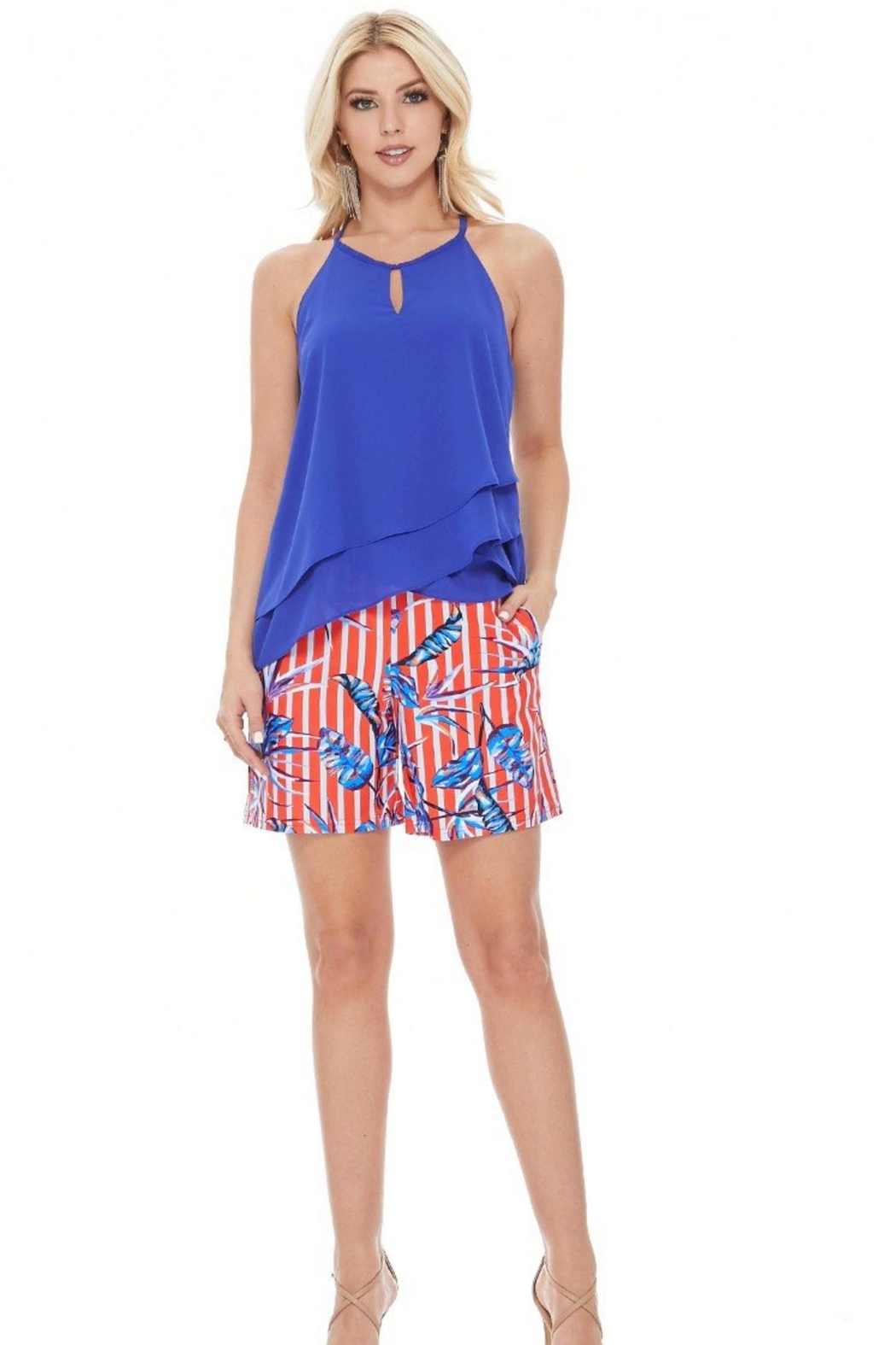 Aryeh Tropical Scarlet Shorts - Front Cropped Image