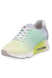 ASH Ash Lucky Sneakers - Front cropped