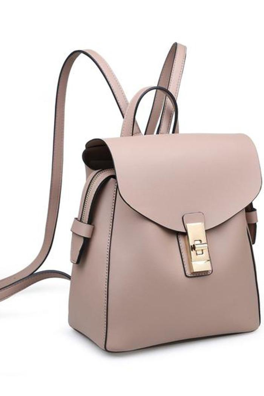 Moda Luxe Asher Backpack - Front Full Image