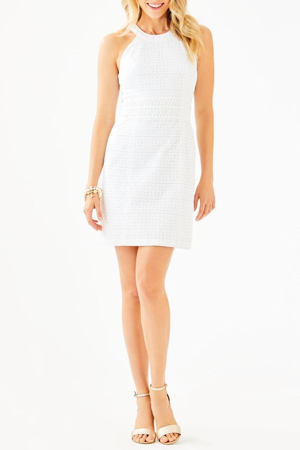 Lilly Pulitzer Ashlyn Shift Dress - Back Cropped Image