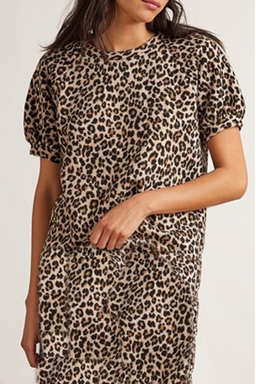 Velvet Leopard Dress - Main Image