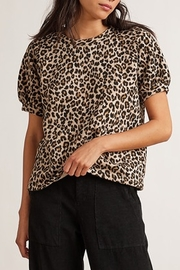Velvet Leopard Dress - Front cropped