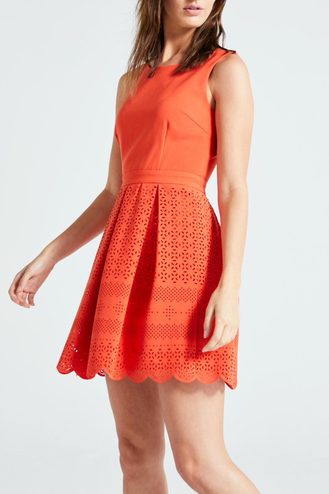 Angeleye London Aster Dress - Front Cropped Image