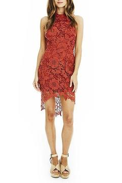 Shoptiques Product: Samantha Lace Dress