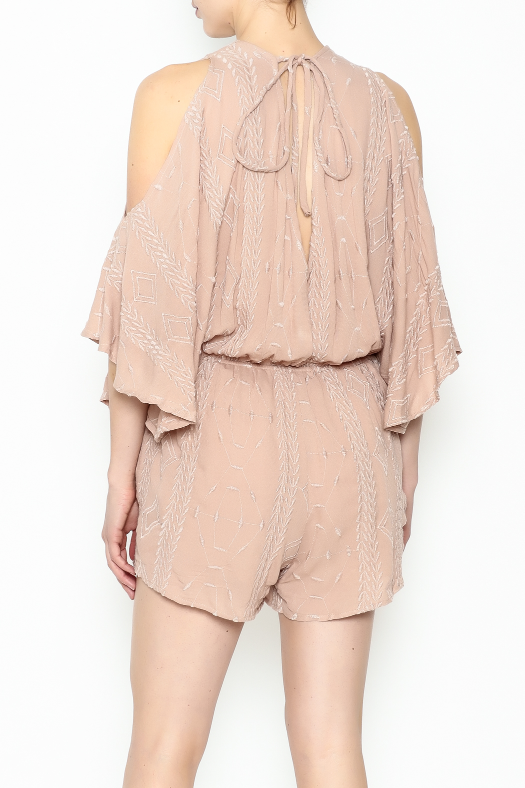 Audrey 3+1 Blush Embroidered Romper - Back Cropped Image