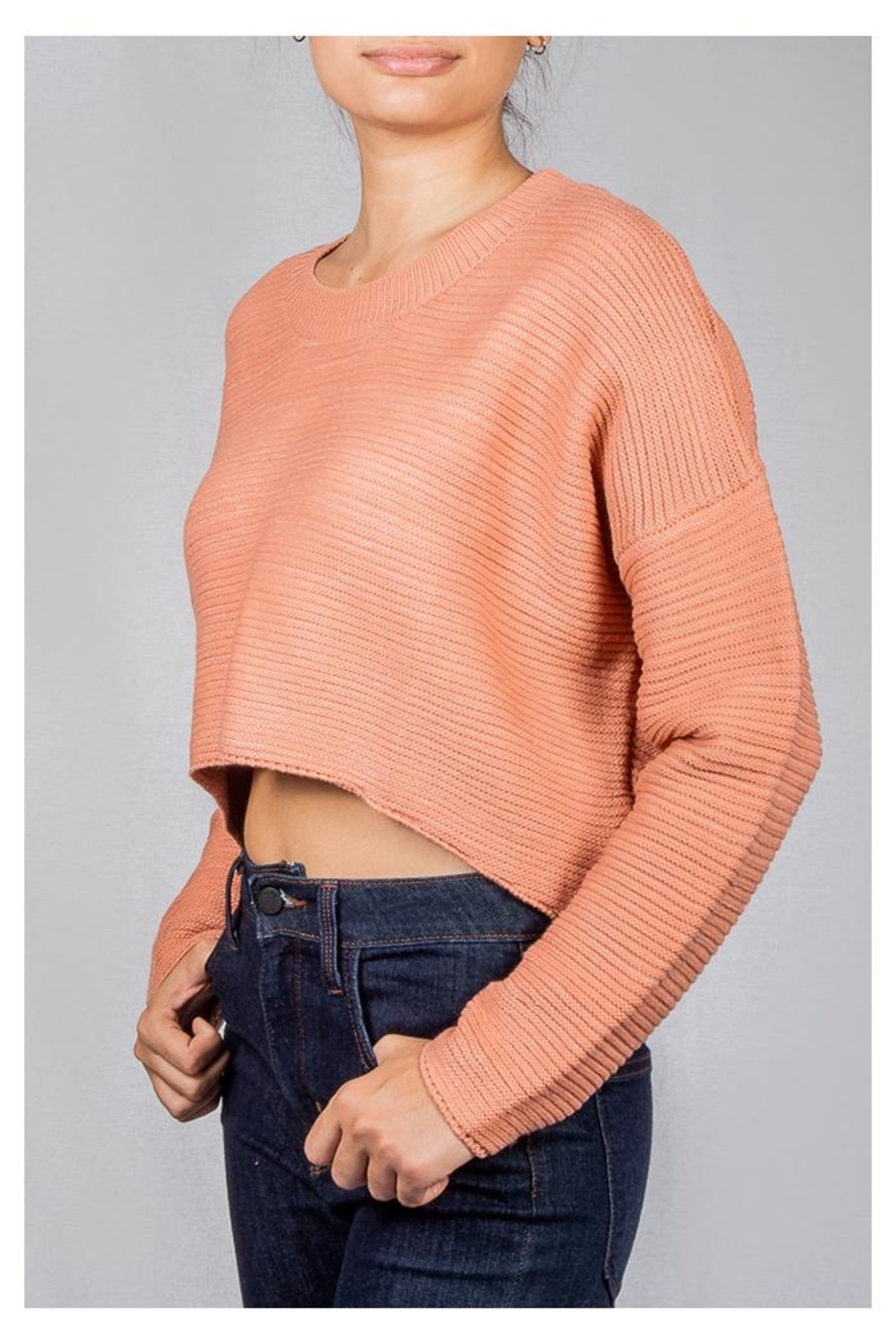 Audrey 3+1 Bubblegum Ribbed Sweater - Front Full Image