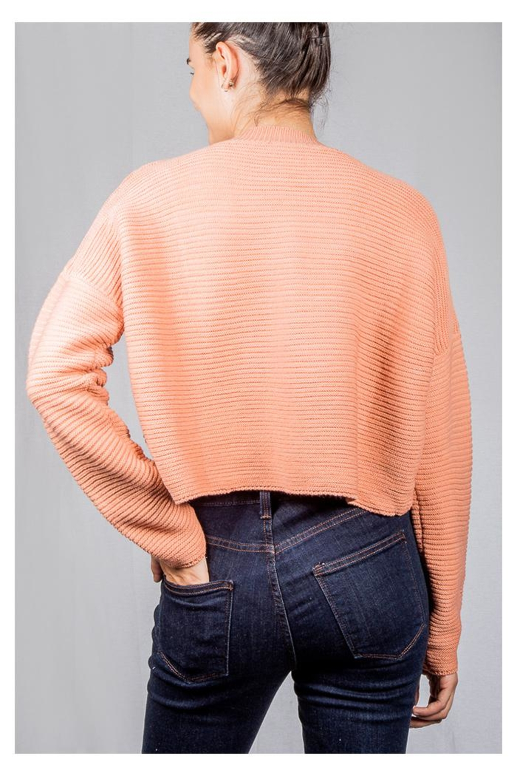 Audrey 3+1 Bubblegum Ribbed Sweater - Back Cropped Image