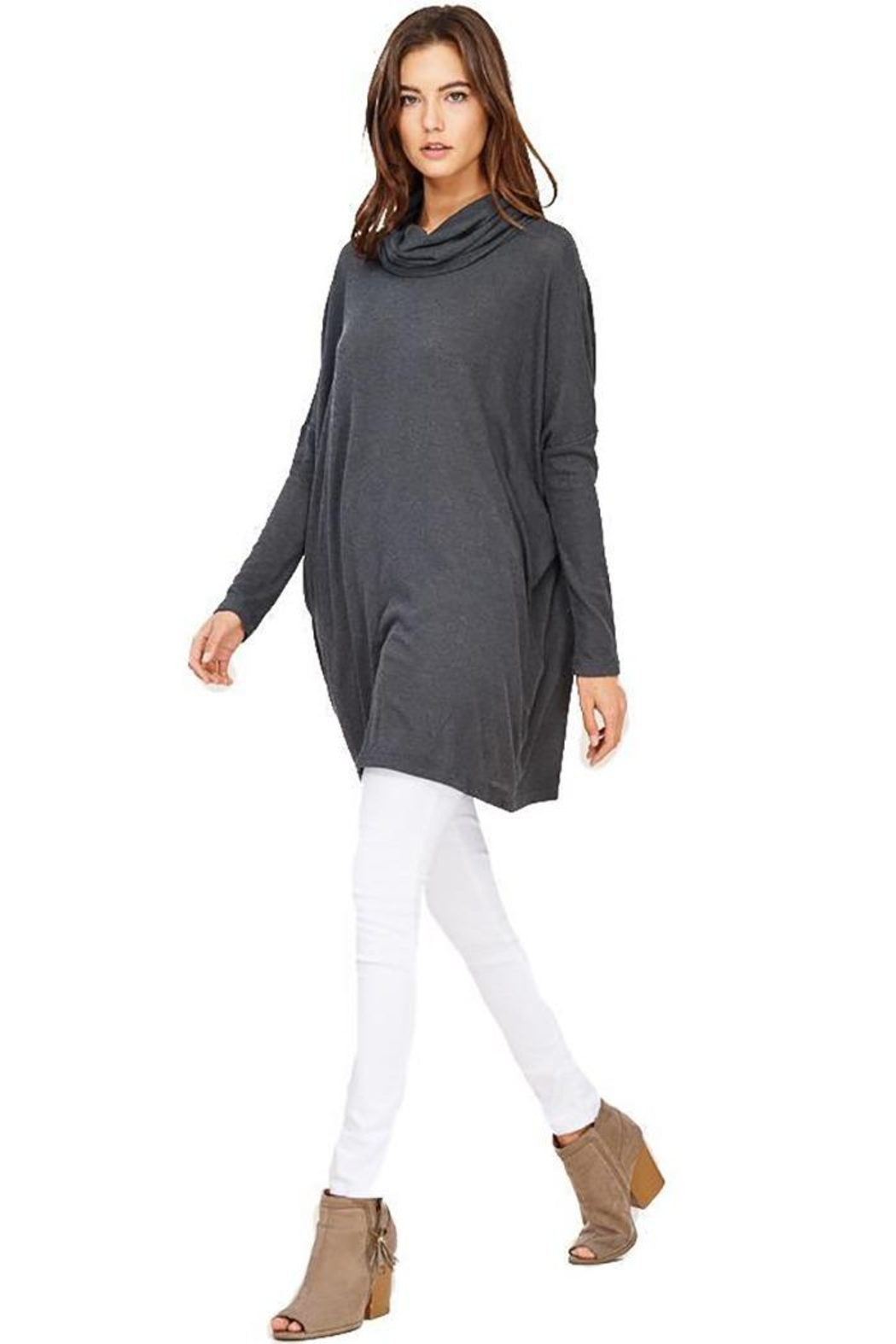 Audrey 3+1 Edie Turtleneck Sweater Dress - Front Cropped Image