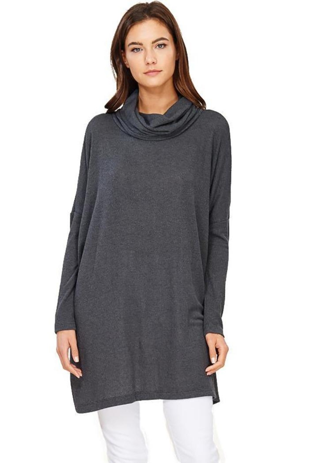 Audrey 3+1 Edie Turtleneck Sweater Dress - Front Full Image