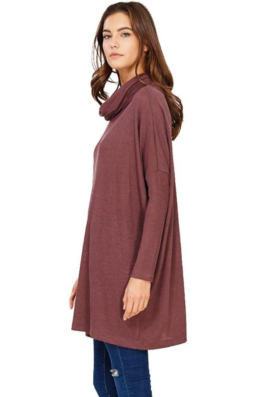 Audrey 3+1 Edie Turtleneck Sweater Dress - Back Cropped Image