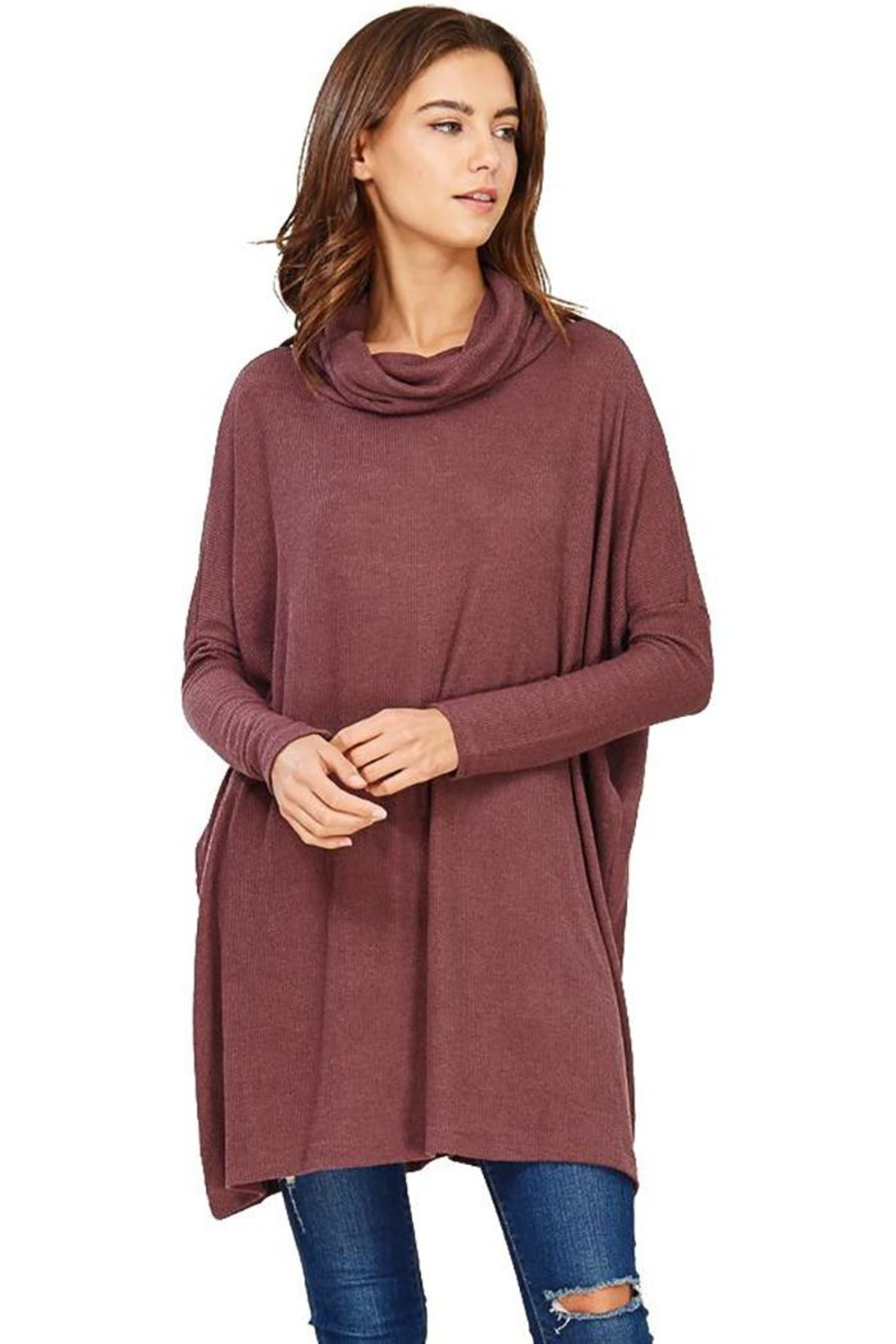 Audrey 3+1 Edie Turtleneck Sweater Dress - Main Image