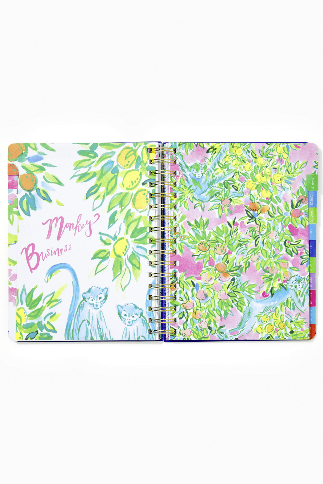 Lilly Pulitzer August 2020-December 2021 Large Agenda - 17 Month - Back Cropped Image