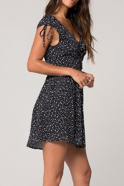 Band Of Gypsies Aukland Polka-Dot Dress - Front full body