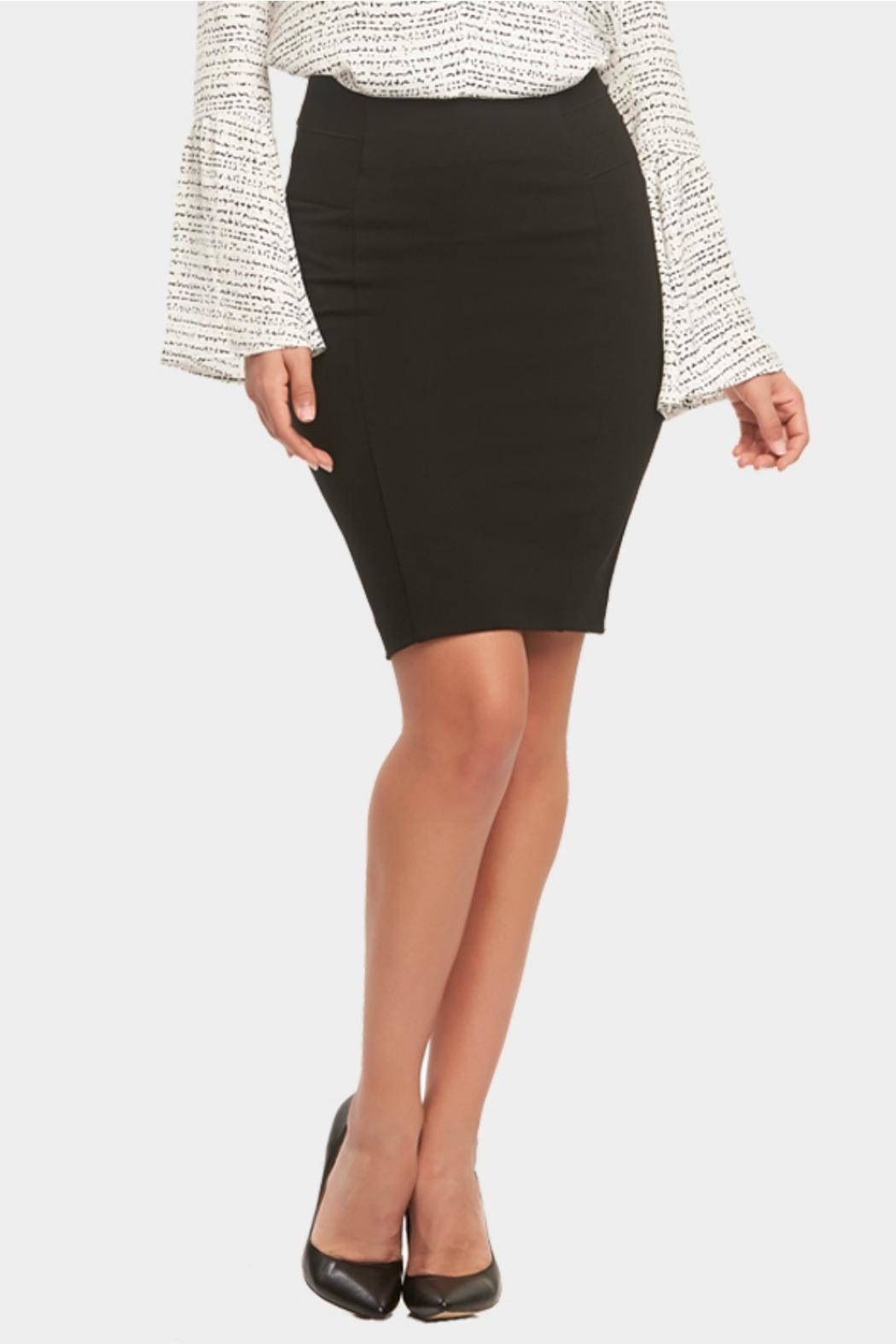Tart Collections Autumn Ponte Skirt - Main Image