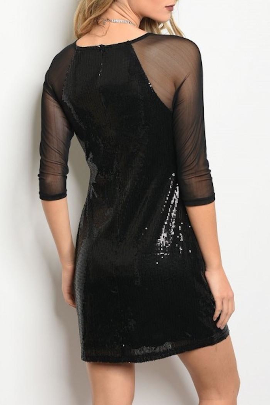 Available Sequin Mesh Dress - Front Full Image