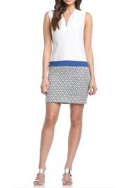 Axara Blue & White Dress - Front cropped