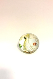 Axicon World Imports Bird Paper Weight - Product Mini Image