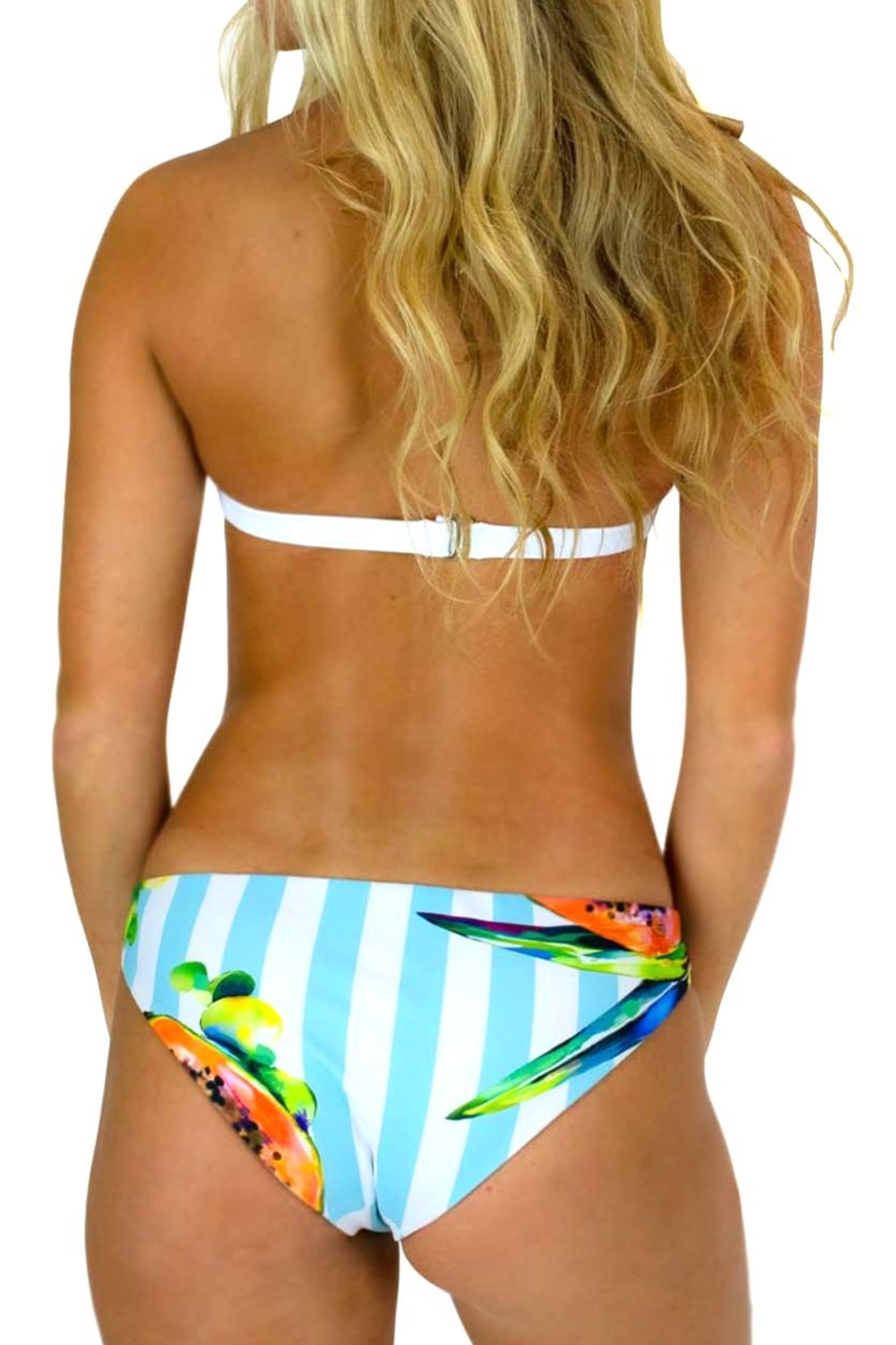 Azure Swimwear Papaya Exuma Bottom - Front Full Image