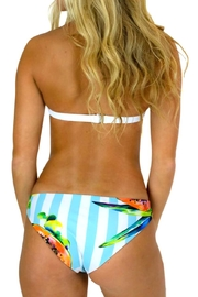 Azure Swimwear Papaya Exuma Bottom - Front full body