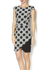 Biscuit Polk Dot Wrap Dress - Product Mini Image