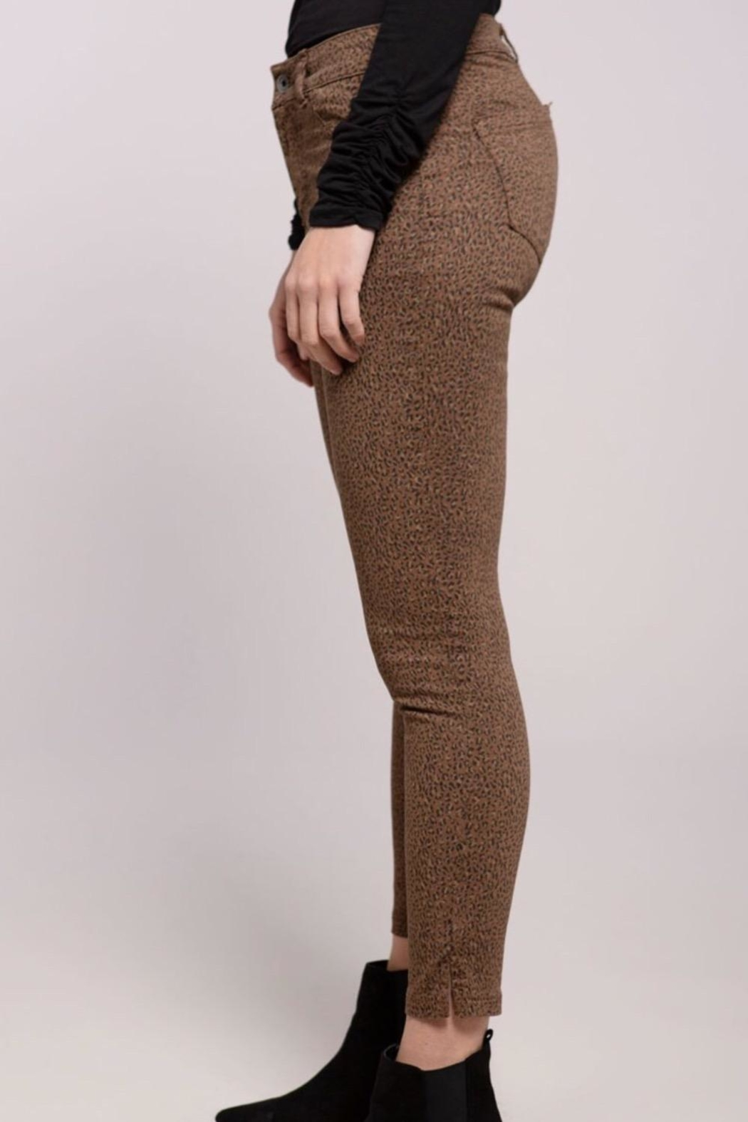 Baci Animal Print Pants - Main Image
