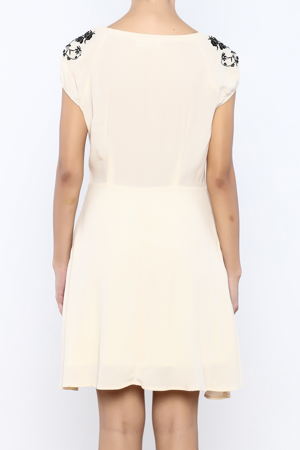 Bacio Beige Embroidered Dress - Back Cropped Image
