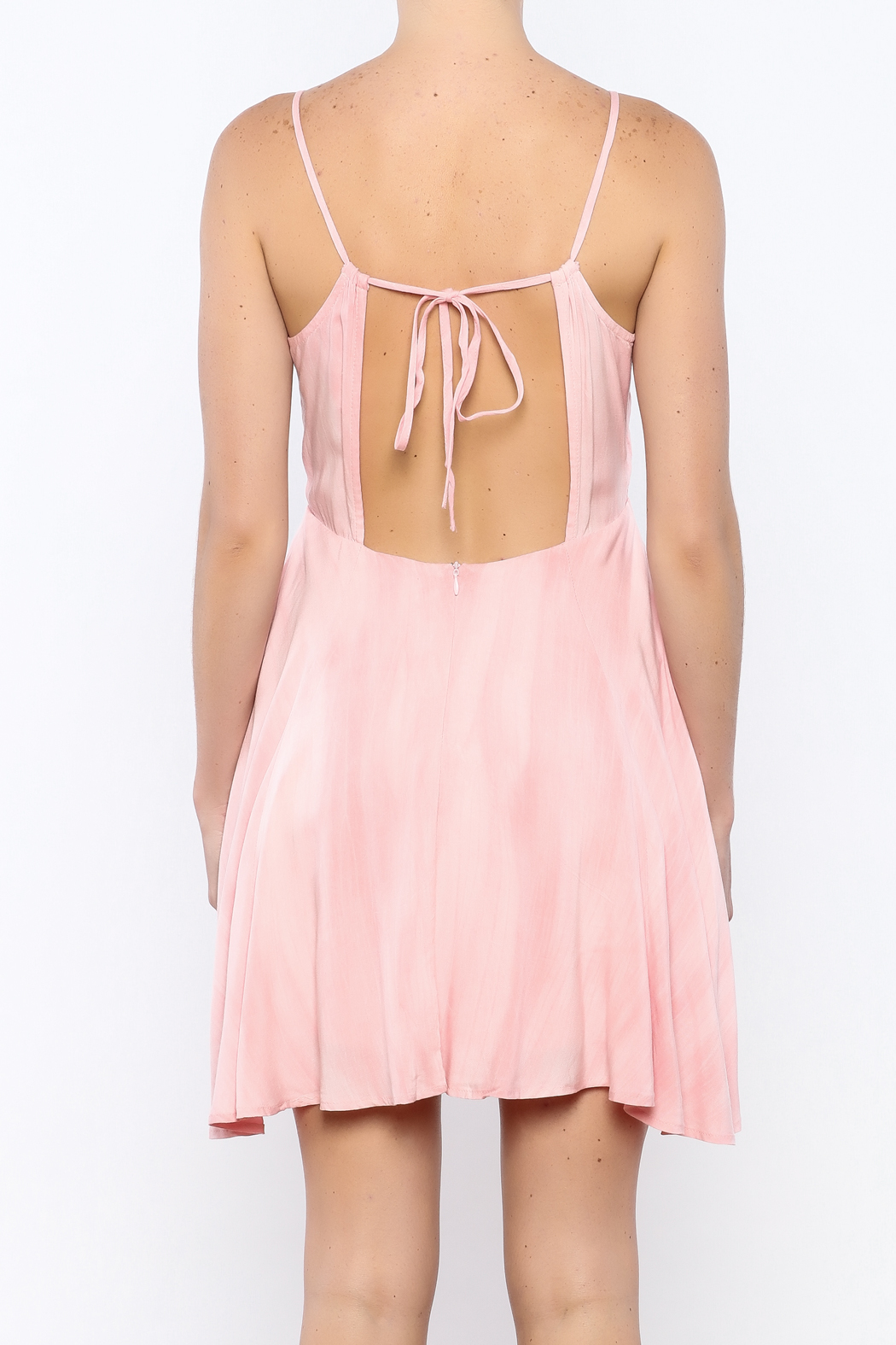 Bacio Blush Flared Dress - Back Cropped Image