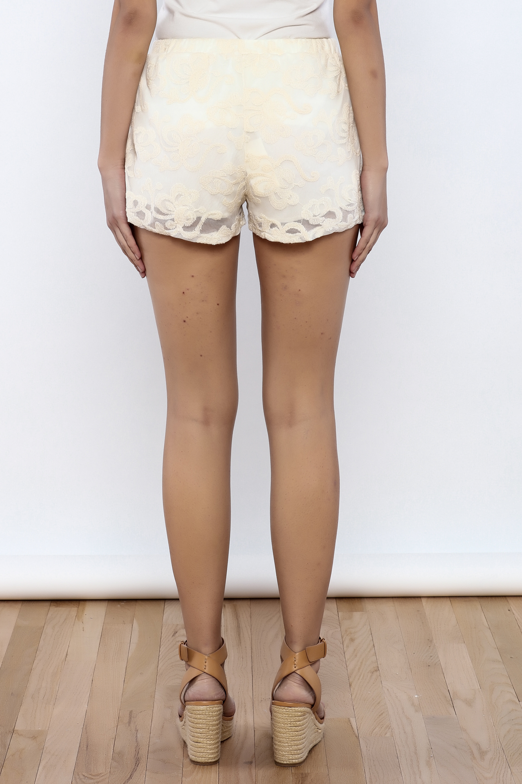 Bacio Lace Shorts - Back Cropped Image
