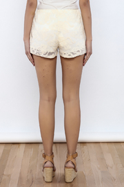 Bacio Lace Shorts - Back cropped