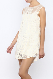 Bacio Sheer Floral Embroidered Dress - Product Mini Image