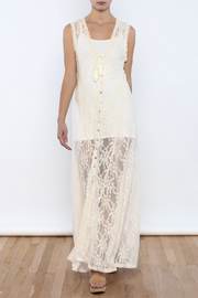 Bacio Sheer Lace Dress - Product Mini Image