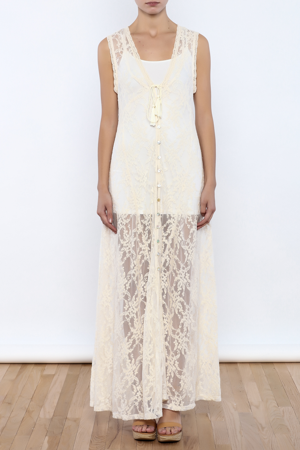 Bacio Sheer Lace Dress - Front Cropped Image