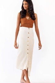 Pink Martini Collection Bahama Stripe Skirt - Front cropped